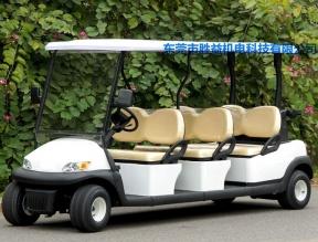 6座高尔夫球车AEG106B
