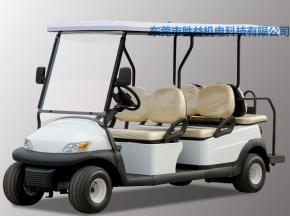 6座高尔夫球车AEG104B+2